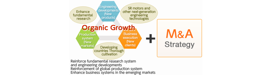 Organic growth + M&A strategy = Four pillars of 'Vision 2015'