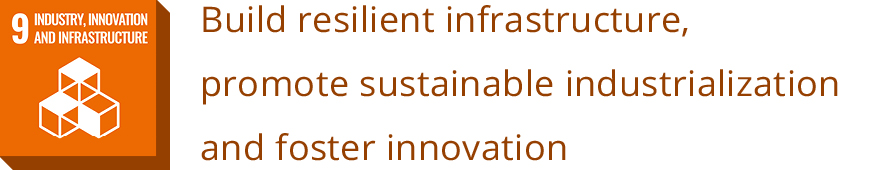 9 INDUSTRY, INNOVATION AND INFRASTRUCTURE<br>Build resilient infrastructure, promote sustainable industrialization and foster innovation