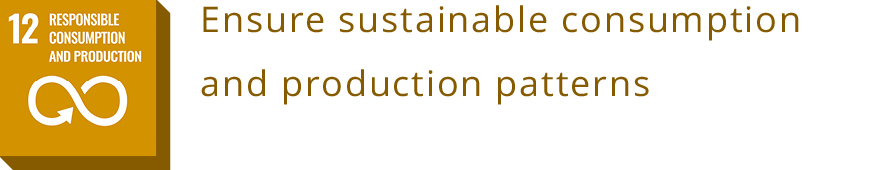 12 RESPONSIBLE CONSUMPTION AND PRODUCTION<br>Ensure sustainable consumption and production patterns